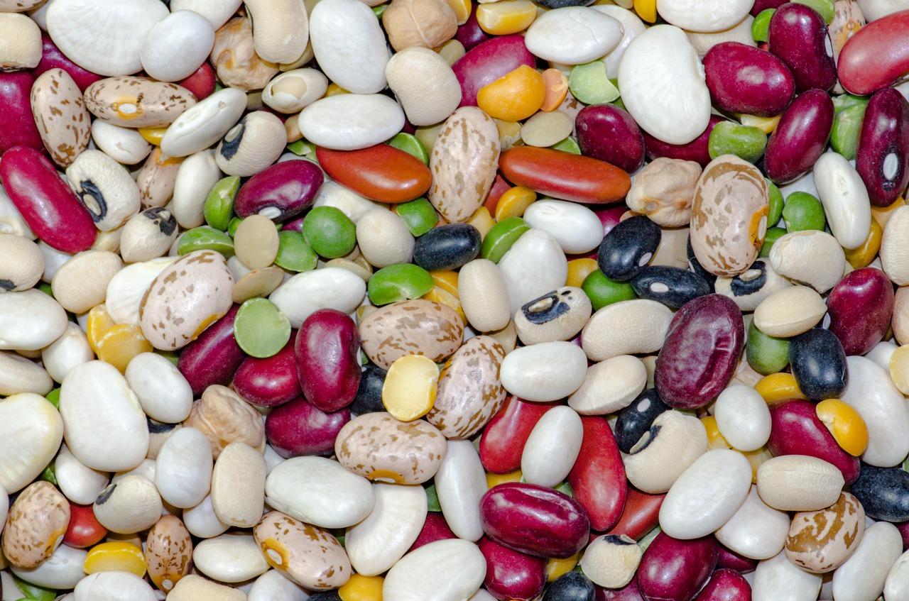 beans-1684304_1280