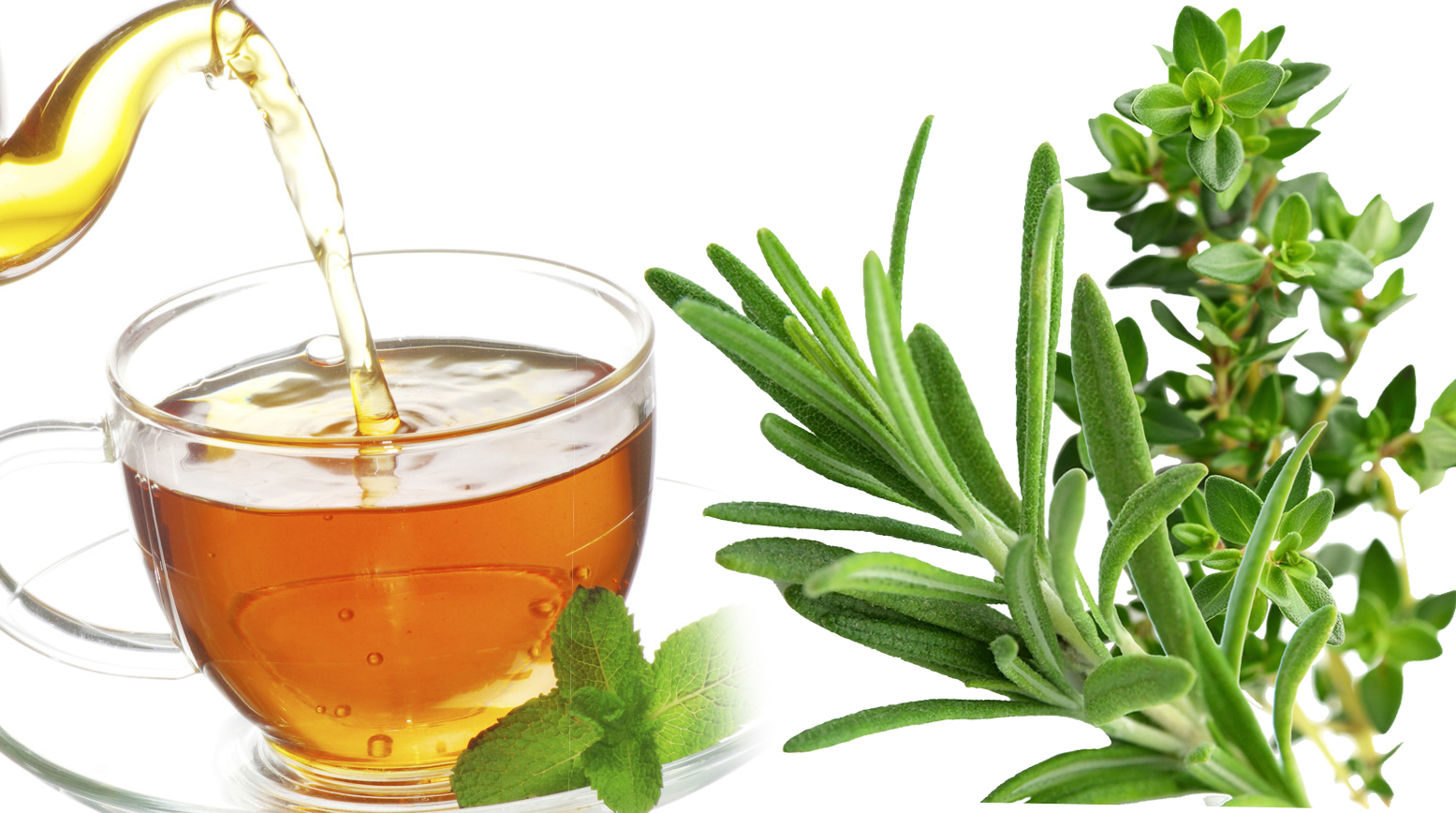 5.1-Boost-your-Consentration-and-Memory-with-Rosemary-Thyme-Tea.jpg CAROL