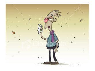 hayfever allergies