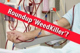 roundup and kidney disease