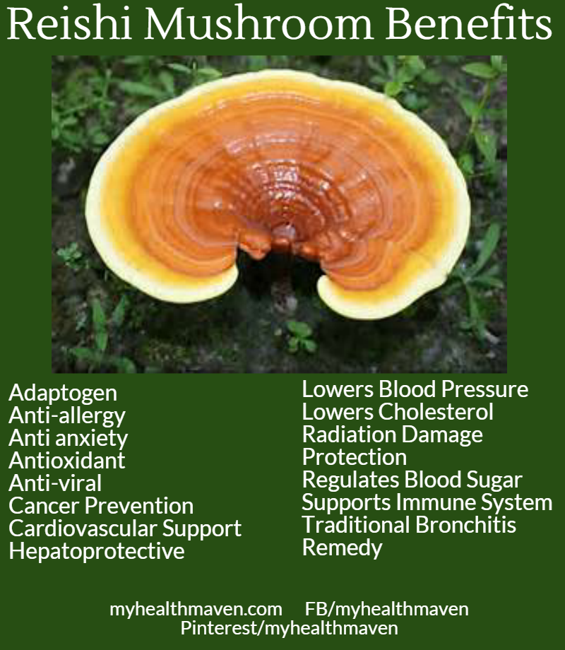 The Benefits of Reishi Mushrooms