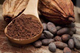 chocolate-powder-beans-pod
