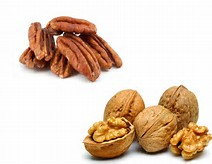 walnuts-and-pecans