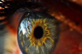 human-eye-995168_640