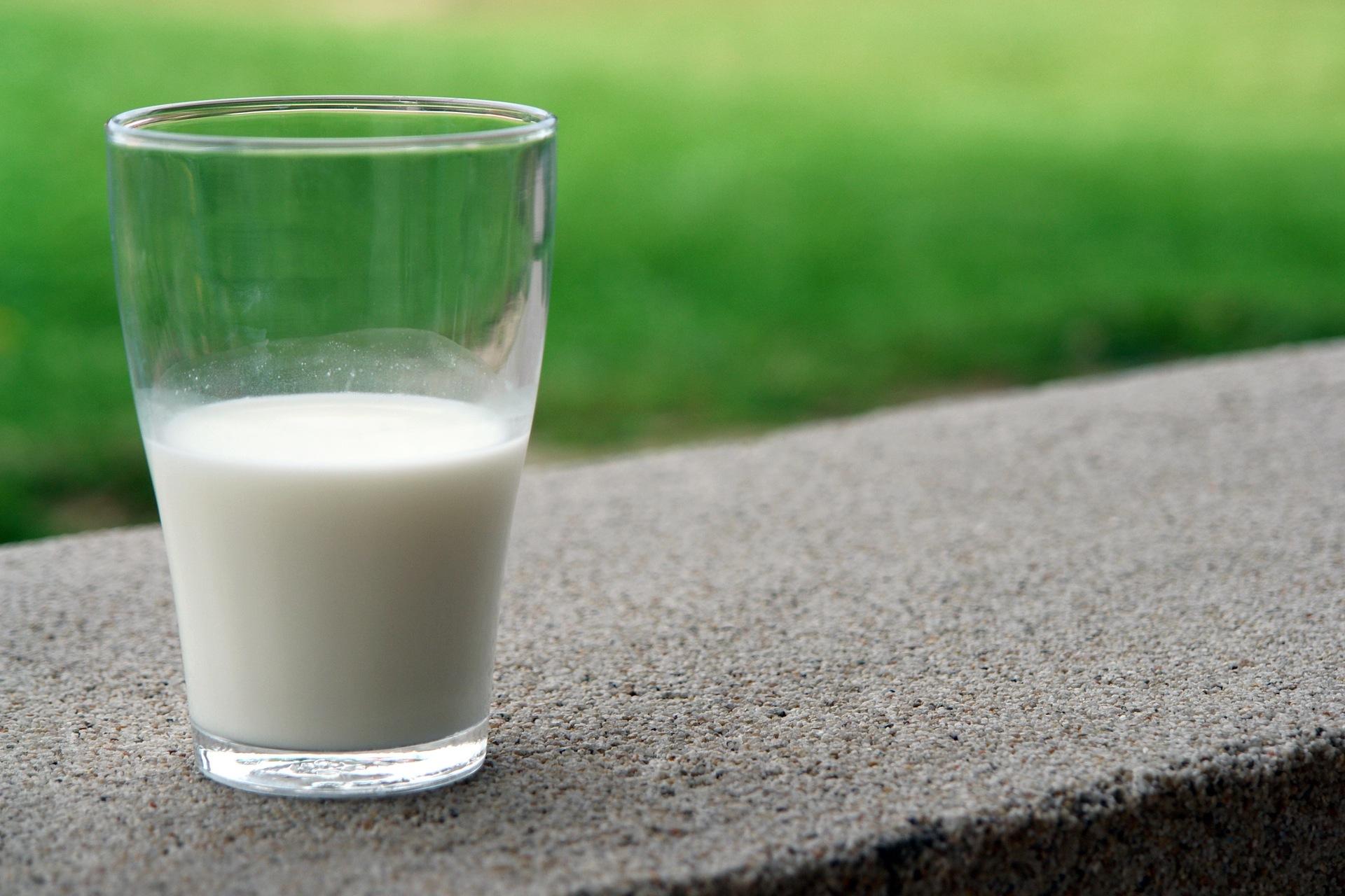 dairy free milk
