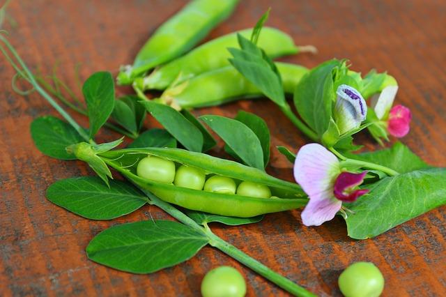 peas-pods